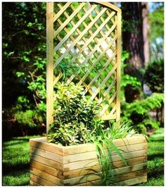 Rectangular Planter with Trellis - The ideal way to create an interesting flowerbed. The grille ended with an original arch will give support to the climbers. Rectangular Planters, Types Of Plants, Flower Beds, Garden Planning, Trellis, Garden Plants, Gazebo, Yard, Outdoor Structures