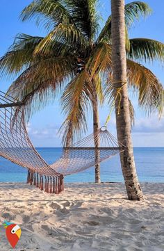 Traumurlaub auf Kuba #cuba #dream #holidays #carribean
