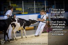 you all need to learn the MOST of the people who win showmanship worked for it so don't be mad when I beat you:)