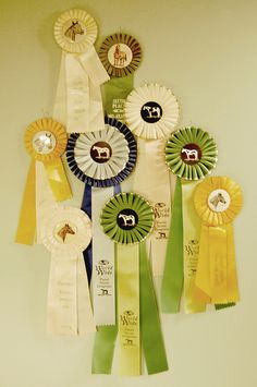 i never quite found the right way to display my ribbons, but i love this little grouping.