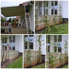 Färdig spalje 2 | Showroom | tankar om form och färg Garage Pergola, Pergola Patio, Backyard Landscaping, Outdoor Planters, Outdoor Gardens, Outdoor Projects, Garden Projects, Wall Trellis, Living Fence