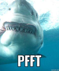 Pfft shark