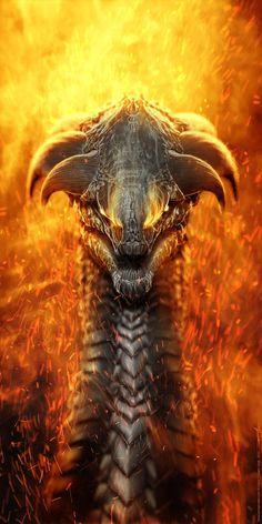 Vestia del dragon