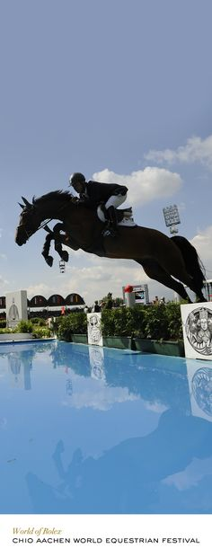 Rodrigo Pessoa riding Let's Fly, HANN at CHIO Aachen. #Rolex #RolexOfficial