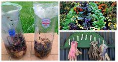 Egy szorgos férj 10 + nélkülözhetetlen kerti tanácsa, amelyek megkönnyítik a kertészkedést!