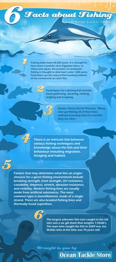 Facts about fishing infographic.