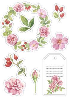 Journal Stickers, Scrapbook Stickers, Journal Cards, Planner Stickers, Tumblr Stickers, Free Stickers, Printable Stickers, Pop Up Frame, Pretty Designs