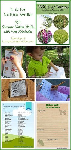 "For ""N is for Nature Walks,"" I'm sharing a roundup of 40+ summer nature walks with free printables."