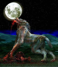 This wolf is eatin flesh !(she wolf)! Creatures Of The Night, Magical Creatures, Fantasy Creatures, Of Wolf And Man, American Werewolf In London, Werewolf Art, Arte Robot, Howl At The Moon, Vampires And Werewolves