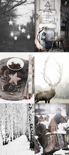Winter by eneska : Photo