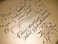 barbara calzolari, calligrapher. *wow*