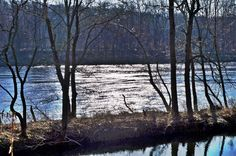 River glistens