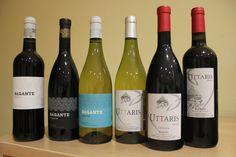 Riquísimos vinos del Bierzo.