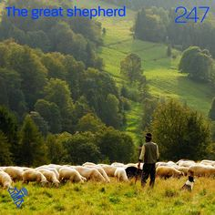 The great shepherd You can listen to this talk at podcastrevival.com/247 or find us in your podcast app on your phone. #Jesus #Christ #God #holyspirit #baptism #bible #PodcastRevival #RevivalFellowship Water Baptism, Unicorn Images, North Country, The Good Shepherd, Good Good Father, Holy Spirit, Believe In You, Dogs And Puppies, Knowing You