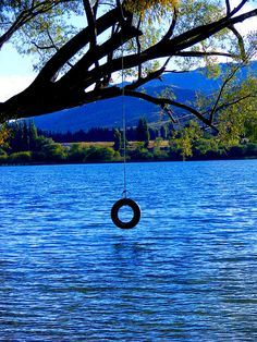 A summer of adventure lies ahead when you have a tire swing over a lake this blue!