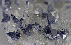 Anatase sur quartz, Melbybråten, Østre Slidre, Oppland, Norway. 5,67 mm. Collection : Bjørn Skår.