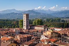Photo about Lucca panoramic view, Tuscany, Italy. Image of panoramic, toscana, tuscany - 25102760 Places In Italy, Places To See, Siena, The Beautiful Country, Beautiful Places, Amazing Places, Italy In September, Tuscany Italy, Destinations