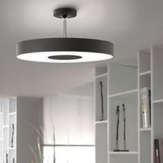 This low-profile, semi-flush ceiling mount is defined by simplicity and functionality. http://www.ylighting.com/philips-forecast-lighting-discus-ceiling-light.html