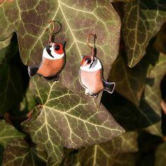 Josef / Náušnice - vtáčik (1)