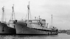 Thorhøimt ex Eglantine - Lardex Lofoten, Belfast, Whales, Raiders, Corvette, Sailing Ships, Thor, Diesel, Boat