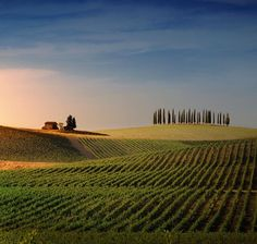 "#ff ""@I__Love__Italy: Toscana pic.twitter.com/L6y0If7htq"""