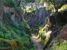The pathway to Cerveteri, an Etruscan city of the dead just outside Rome.
