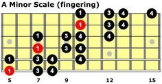 "There are so many ways to play a given scale, and it's useful to know as many as possible, in order to have something for every occasion. You're probably familiar with the standard scale form that stays in a single position: Three-note-per-string (which we refer to at PTG with the ""3N/S"" shorthand) scales are extremely…"