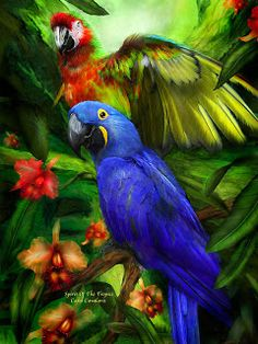 Коллекция картинок: Цифровая живопись Кэрол Каваларис. Птицы