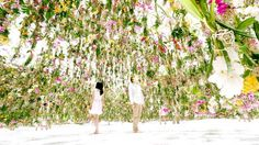 Mon jardin des airs | Tokyo , musée Miraikan Collectif designers TeamLab