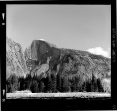 Cook's Meadow facing Half Dome - Yashica D - Ilford HP5