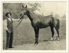 "Domino, known as ""The Black Whirlwind"" raced in the 1890s"