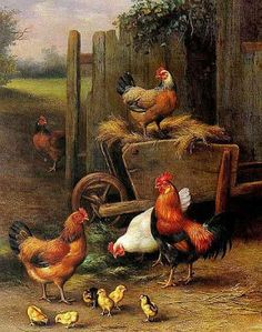 "Christian Symbols. Cock: the cock is the harbinger of the dawn, and ""Oriens"" -- ""Dawn"" -- is one of the titles for Christ (used especially in the O Antiphons during Advent). It is, then, a general symbol for Hope."" ~ fisheaters. Image: Fowl and Chicks, Edgar Hunt."