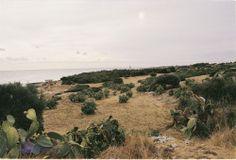 9.9 Puglia, somewhere around Polignano