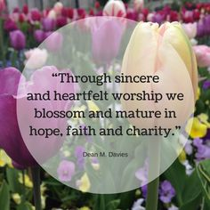 "Bishop Davies: ""Through sincere and heartfelt worship we blossom and mature in hope, faith and charity."" #LDSConf #LDS #Quotes"