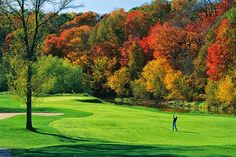 Which Would You Choose…Fall Foliage Edition Golf Chipping Tips, Golf Apps, Golf Pictures, Golf Tips For Beginners, Autumn Scenery, Fall Wallpaper, Colorful Trees, Golf Courses, Beautiful Pictures