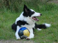 Raily , it's my Ball
