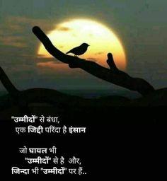 Motivational Status in Hindi Motivational Quotes in Hindi Hindi Quotes Images, Inspirational Quotes In Hindi, Shyari Quotes, Motivational Picture Quotes, Hindi Quotes On Life, Photo Quotes, People Quotes, Words Quotes, Inspiring Quotes