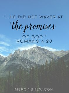 Yet he did not waver through unbelief regarding the promise of God. Romans 4:20 Romans 4 20, Mom Devotional, Your Love Never Fails, Bible Study Tips, Bible Verses, Bible Book, Gods Promises, Verse Of The Day, Words Of Encouragement