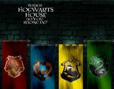 Which Hogwarts House Do You Belong In? - Quiz - Zimbio