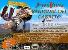 http://quehacemossalta.com/ #QHS  Sábado 14 Enero Primer Festival Regional del Cabrito.