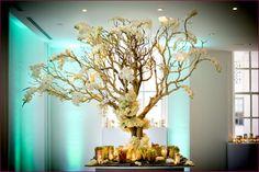 Manzanita Branches for Weddings #natural centerpieces #DIY #flowers