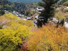 吉野山周辺 写真