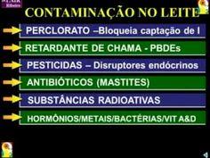 O Mito do Leite - Dr Lair Ribeiro - YouTube