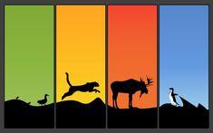 Η πανίδα και τα είδη της Color Balance, Cool Wallpaper, Yahoo Images, Making Out, Moose Art, Art Pieces, Batman, Creatures, Deviantart