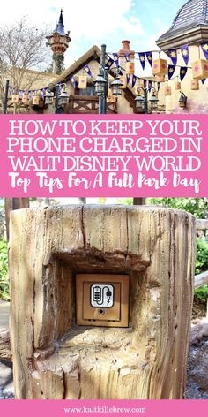 How to Keep Your Phone Charged in the Parks While Visiting Walt Disney World – Urlaub Ideen Disney World Resorts, Disney World Tipps, Disney World Secrets, Disney World Vacation Planning, Disney World Parks, Disney Planning, Disney World Tips And Tricks, Disney Tips, Disney Vacations