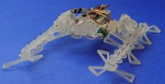 Students at UC Berkeley have developed the STAR (Sprawl Tuned Autonomous Robot), a robot that can flatten its legs to slip under small gaps and raises them up again to climb over obstacles. Robot Technology, Technology Gadgets, 3d Printed Robot, Robot Videos, Autonomous Robots, Real Robots, Robot Design, Three Dimensional, 3 D