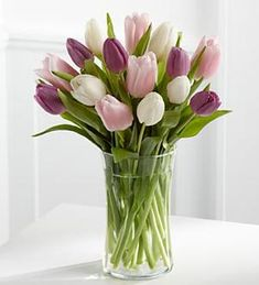 Order Painted Skies Tulip Bouquet Standard online for delivery in uae. Send Flower Flowers Tulips Flower Arrangement to your loved ones with Ferns N Petals. Purple Tulips, White Tulips, Tulips Flowers, Flower Vases, Spring Flowers, Beautiful Flowers, Pink Purple, Send Flowers, Sympathy Flowers