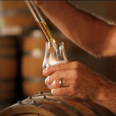 Taste test Distilling Equipment, Distillery, Whiskey, Decorating Ideas, Cleaning, Bottle, Places, Whisky, Flask