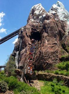 Disney's Animal Kingdom photo, from ThemeParkInsider.com..Everest Expedition