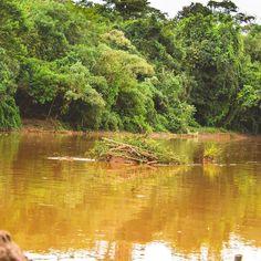 5# Meio Ambiente - E tudo isso é aqui pertinho de casa   #desafioprimeira #FotoDoDia #RioDasVelhas #minasgerais